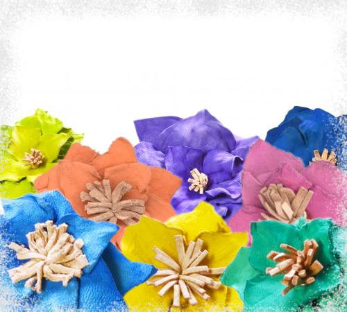 PERUVIAN FLOWERS +